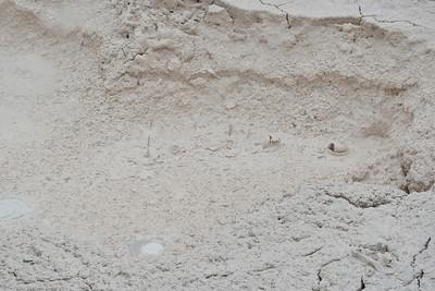 Thick mud pots at Artist Paint Pots trail