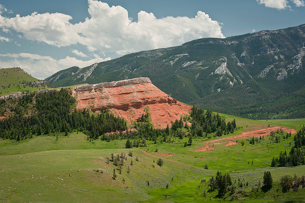 The mountains of this area are the reddest I have ever seen.  It was a year with lots of rain for Wyoming so the grass was rich in green color and highlighted these rocks even more.