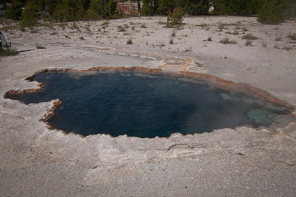 Surprise Pool