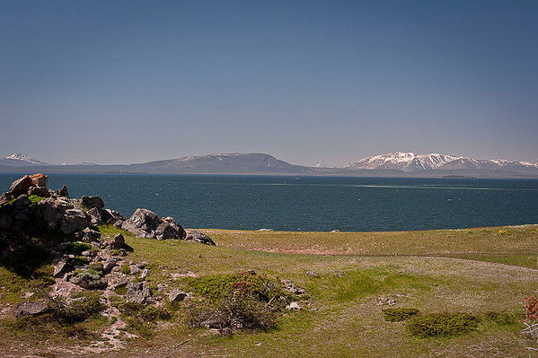 The end of Storm Point Trail.  this overlook of Yellowstone Lake with the Absaroka Mountains is home to Marmots.  Common throughout the park these Yellow-bellied animals are much bigger than ground squirrels weighting in excess of ten pounds compared to a ten ounce squirrel.
