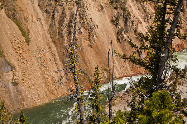 South Rim Canyon