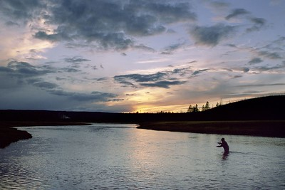 It's sundown on the Firehole River, and there is just enought light for one more cast.  You look around at what God has created; the landscape, the animals, sunsets and sunrises and wonder how anyone cannot believe?