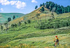 Cyclist in Yellowstone National Park's Lamar Valley - 5-Edit - 72 ppi