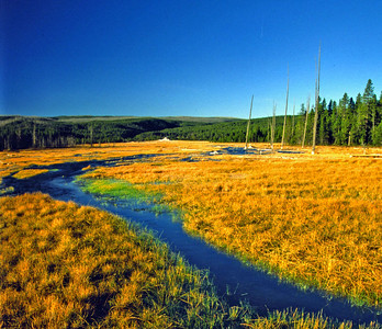The many geysers and pools drain into several rivers in Yellowstone