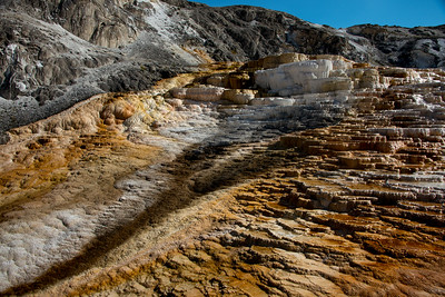 Mammoth Hot Springs, Yellowstone National Park. August 2017.