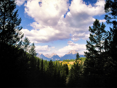 Grand Tetons from Telegraph Hill