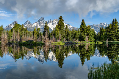 Teton Reflection 3