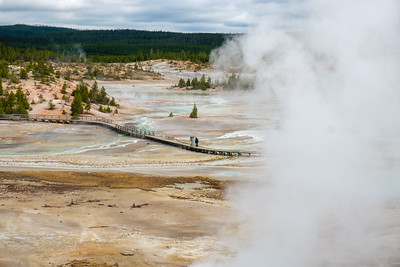 Above Norris Geyser Basin