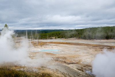 Entering The Norris Geyser Basin
