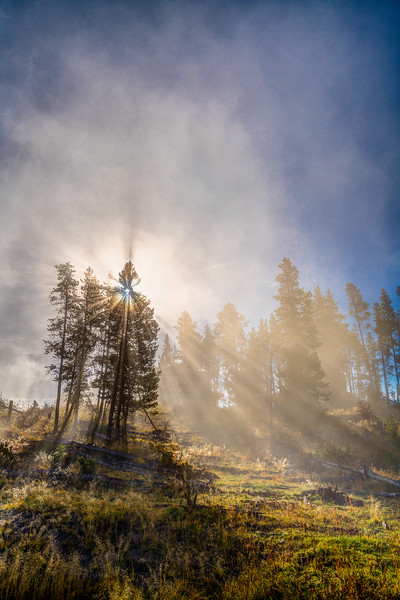Morning Geysers Mist