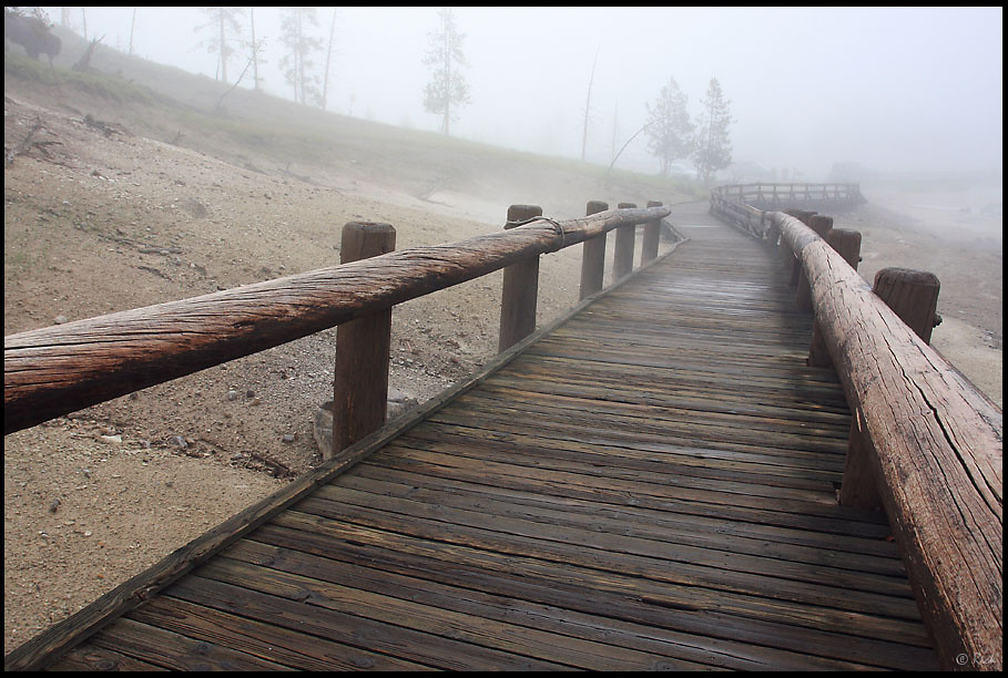 """Broadwalk in Fog, Mud Volcano Area, Early Morning, Yellowstone National Park  When the Washburn Expedition explored the area in 1870, Nathaniel Langford described Mud Volcano as """"greatest marvel we have yet met with."""" Although the Mud Volcano can no longer be heard from a mile away nor does it throw mud from it's massive crater, the area is still eerily intriguing."""