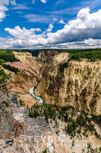 Yellowstone Dreaming