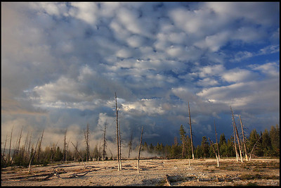 West Thumb Geyser Basin, Early Morning, Yellowstone National Park
