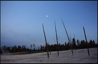 West Thumb Geyser Basin, Moon Rising, Yellowstone National Park