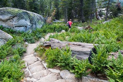 Yosemite Sunrise Trail Steps