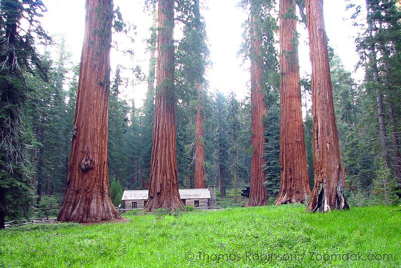 Best_of_California_Trip_62