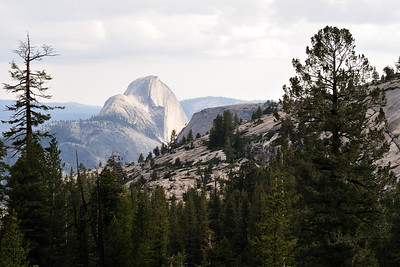 Half Dome from Olmstead Poin