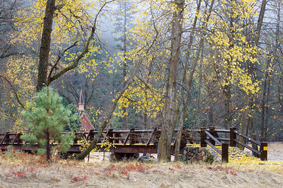 YOS-121201-0003 Superintendent's Bridge with a blanket of leaves