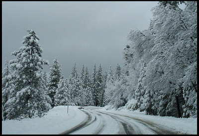 Snow Storm Clearing, On the way into Yosemite Valley