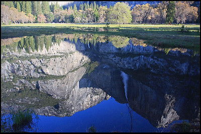 Reflection of the Yosemite Falls