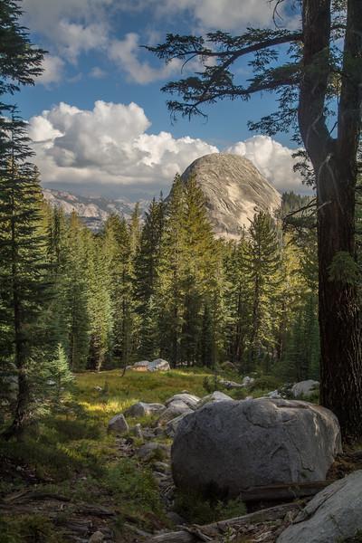 Yosemite Clearing
