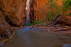 The Entrance to Wall Street in the Zion Narrows