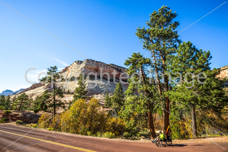 Zion National Park - C3-30289 - 72 ppi