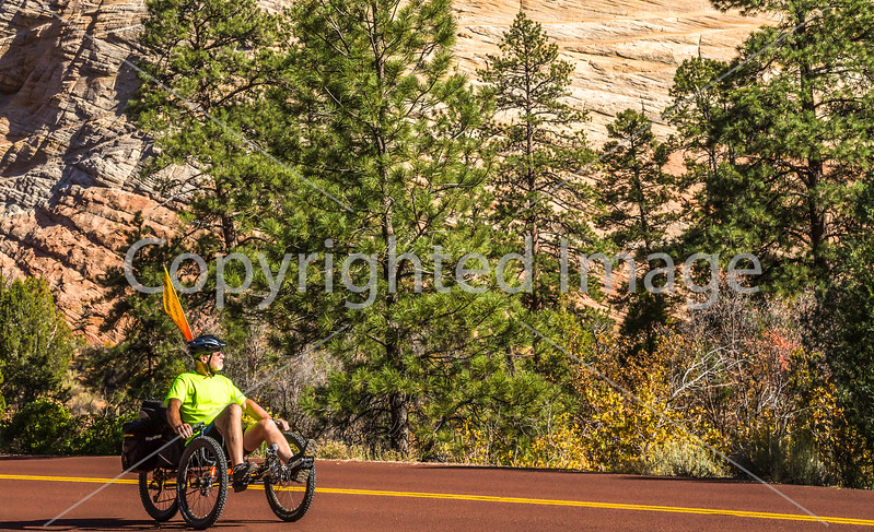 Zion National Park - C2-0055 - 72 ppi-3