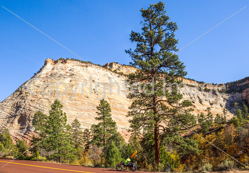 Zion National Park - C2-0022 - 72 ppi