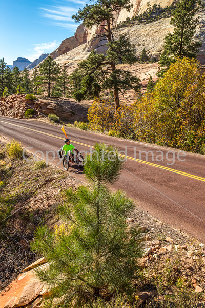 Zion National Park - C3-30320 - 72 ppi
