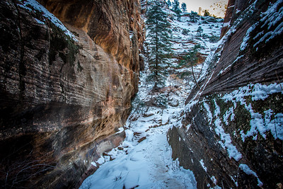Echo Canyon, Zion National Park, Utah, January 2015.