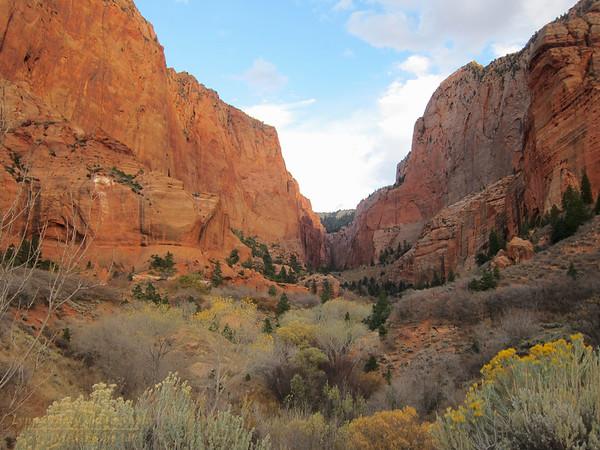 ZNP-NP-171020-00010<br /> Canyon View