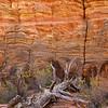 ZNP-171020-0020<br /> Wall Texture #4