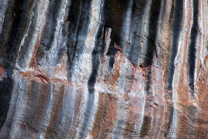 Desert Varnish stains a cliff edge at the Emerald Pools in Zion National Park. Desert Varnish is formed from a variety of minerals seeping into the rock over time.