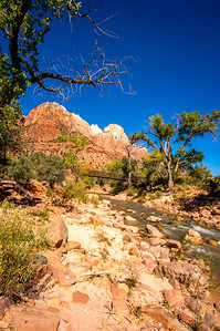 Zion-National-Park_065