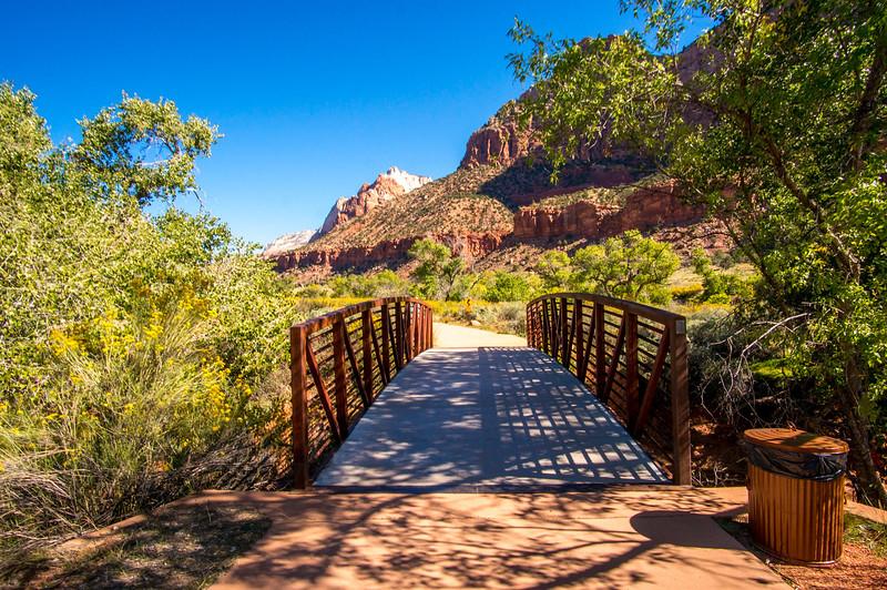 Zion-National-Park_047