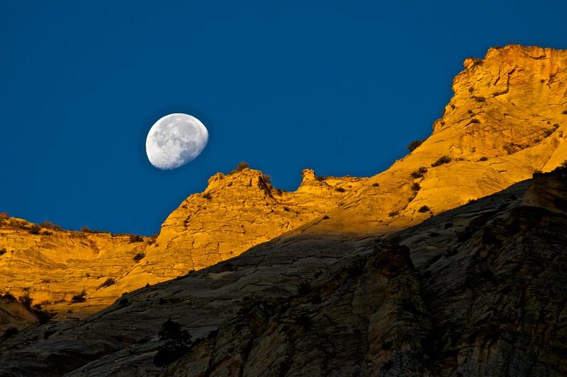 Moon Set in Zion