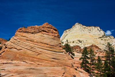 Slick Rock Formations near east entrance to Zion National Park, Utah