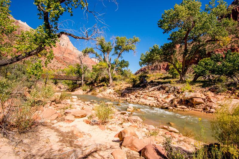Zion-National-Park_060