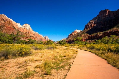 Zion-National-Park_044