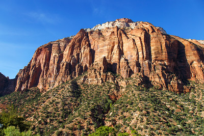 Zion National Park 2017