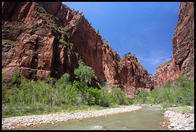 Virgin River in the Canyon, Zion National Park