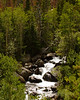 Mountain River, Rocky Mountain National Park