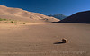 Shadow of a Rock, Great Sand Dunes National Park