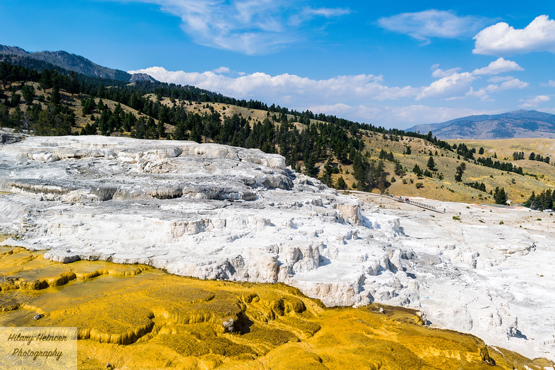 Mammoth Hot Springs Layers