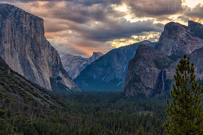 Yosemite Valley, Dawn 10