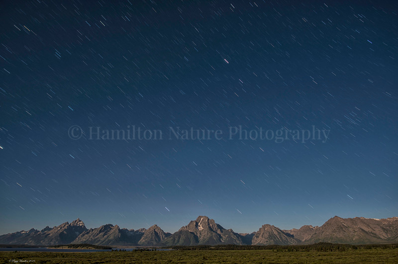 Star Trails Over the Tetons