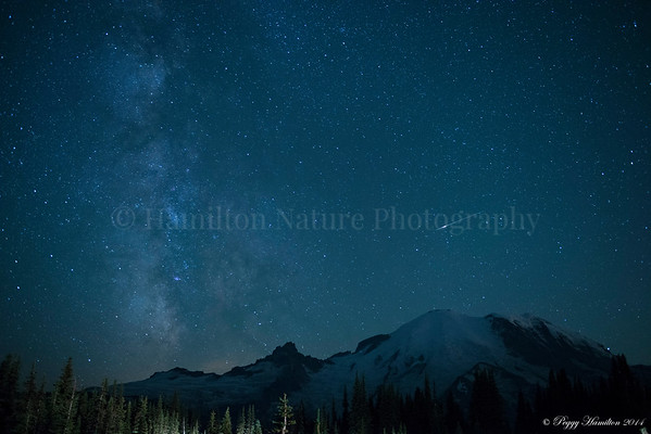 Milky Way and Meteors over Mt. Rainier