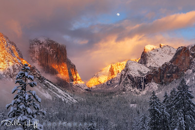 Winter Magic, Yosemite Valley