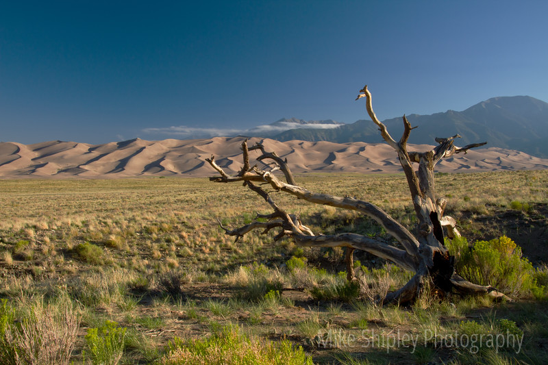 Morning over the Dunes, Great Sand Dunes National Park